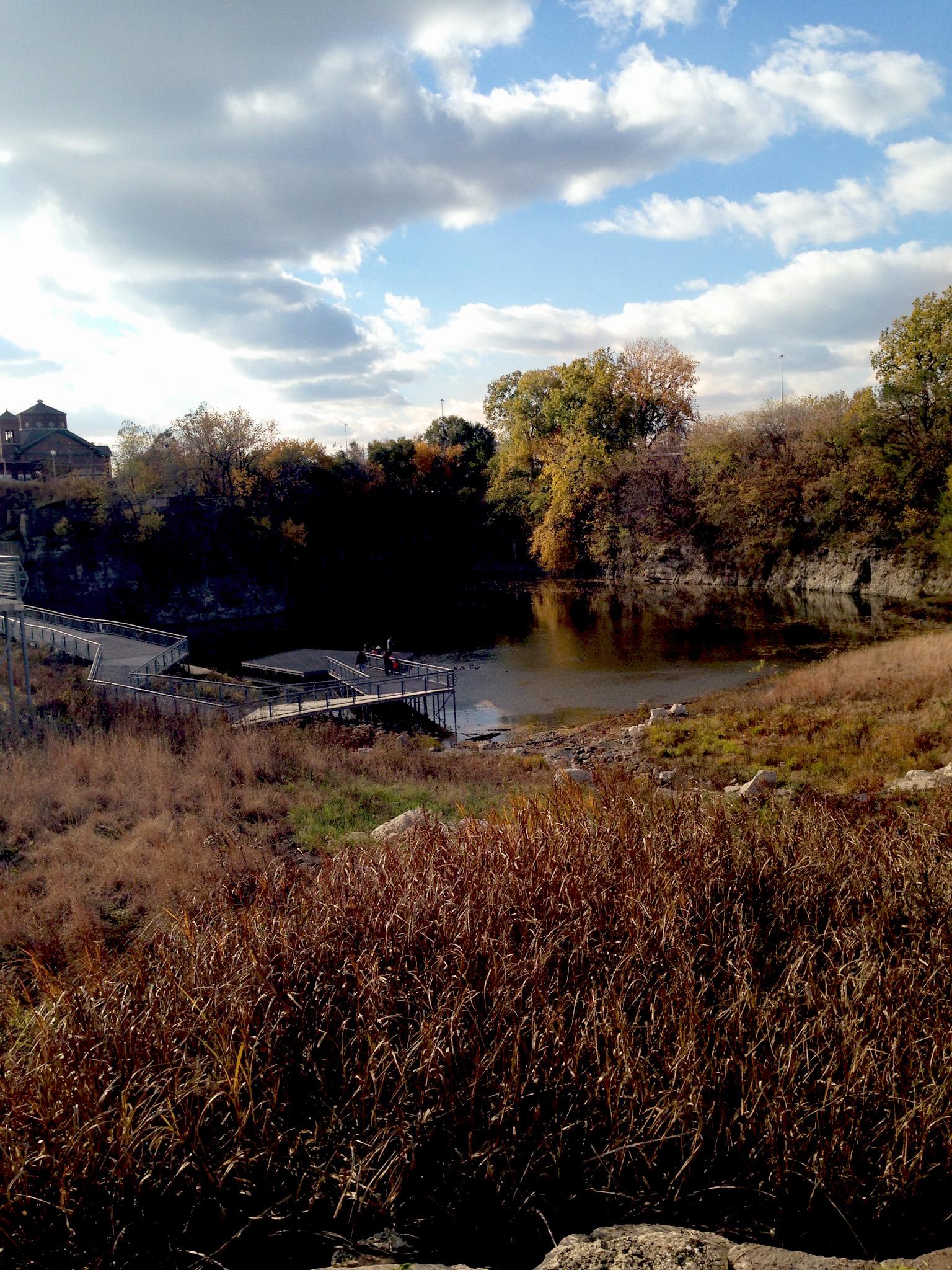 Palmisano Park, Chicago Illinois / Darker than Green