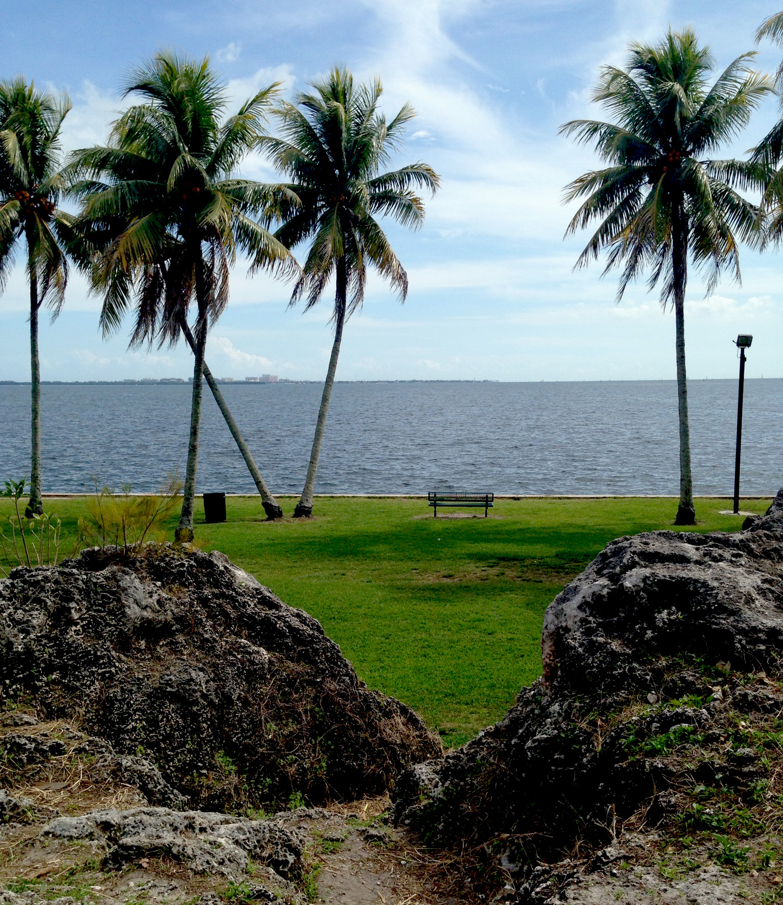 Alice Wainwright Park, Miami Florida / Darker than Green