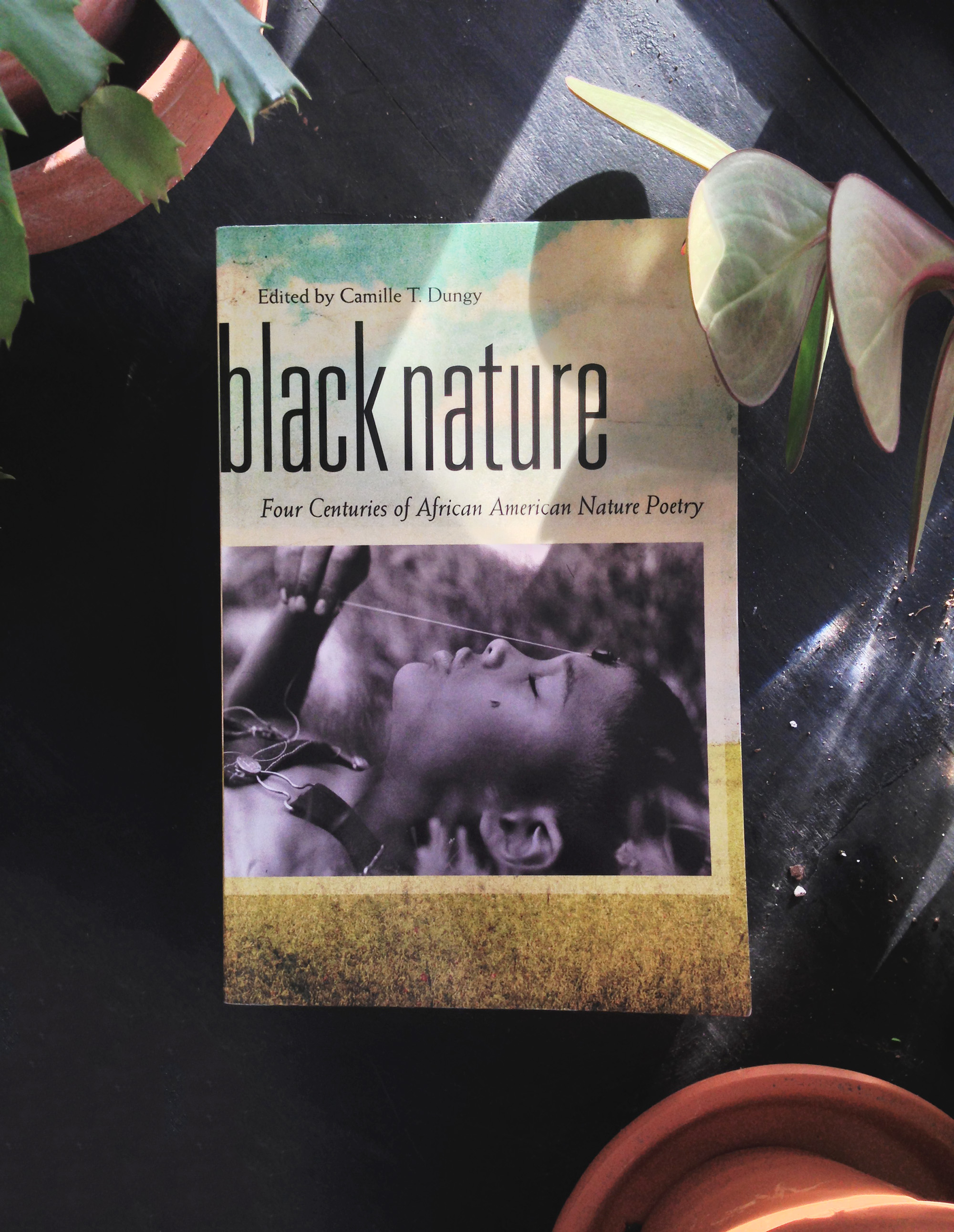 Black Nature: Four Centuries of African American Nature Poetry, Edited by Camille T. Dungy