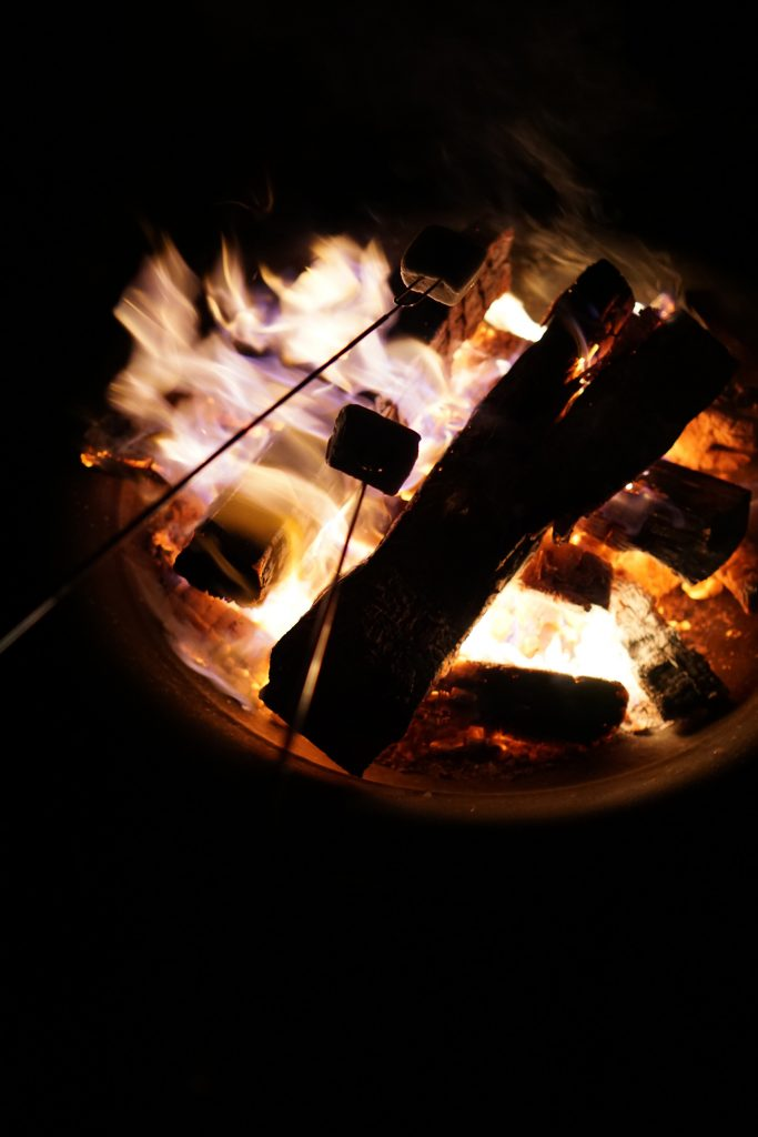 Smores on Northerly Island, Chicago / Darker than Green