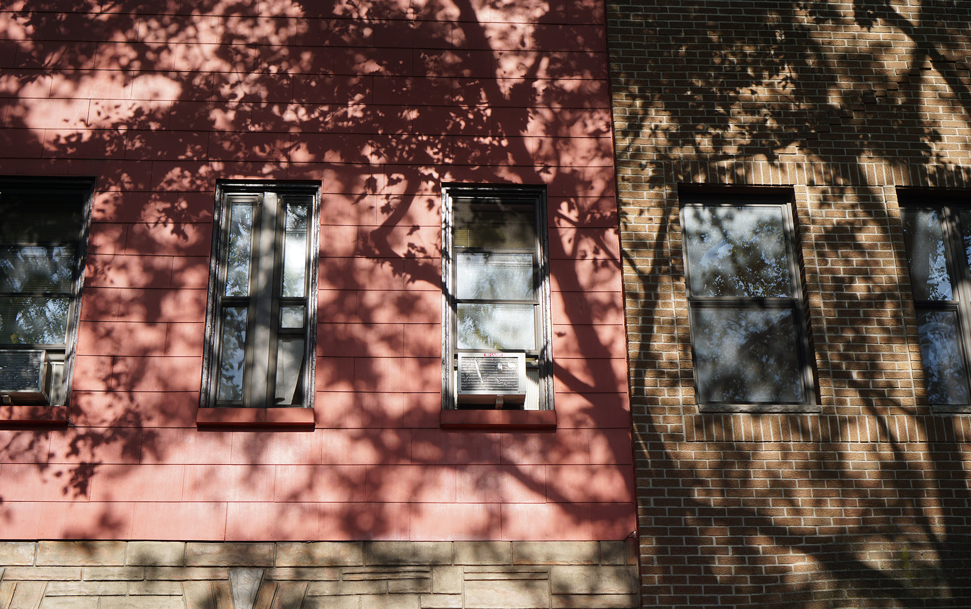 Greenpoint, Brooklyn / NYC Green City Guide / Darker than Green