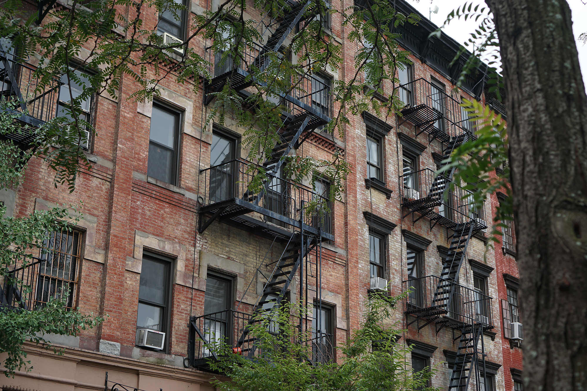 Buildings in Chelsea / NYC Green City Guide / Darker than Green