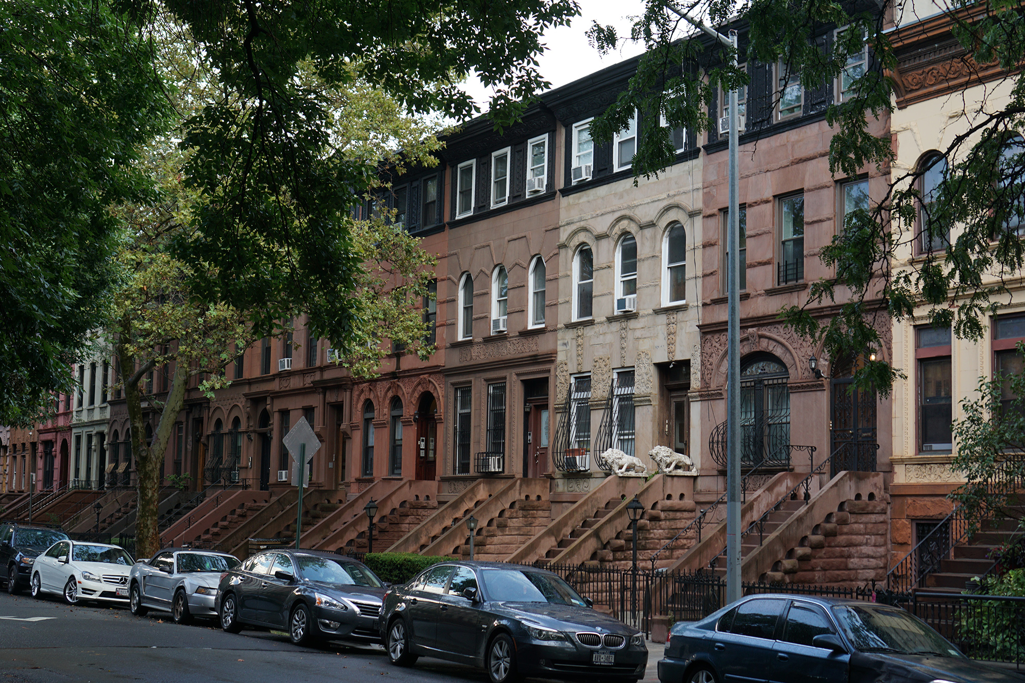 Prospect Heights, Brooklyn / NYC Green City Guide / Darker than Green