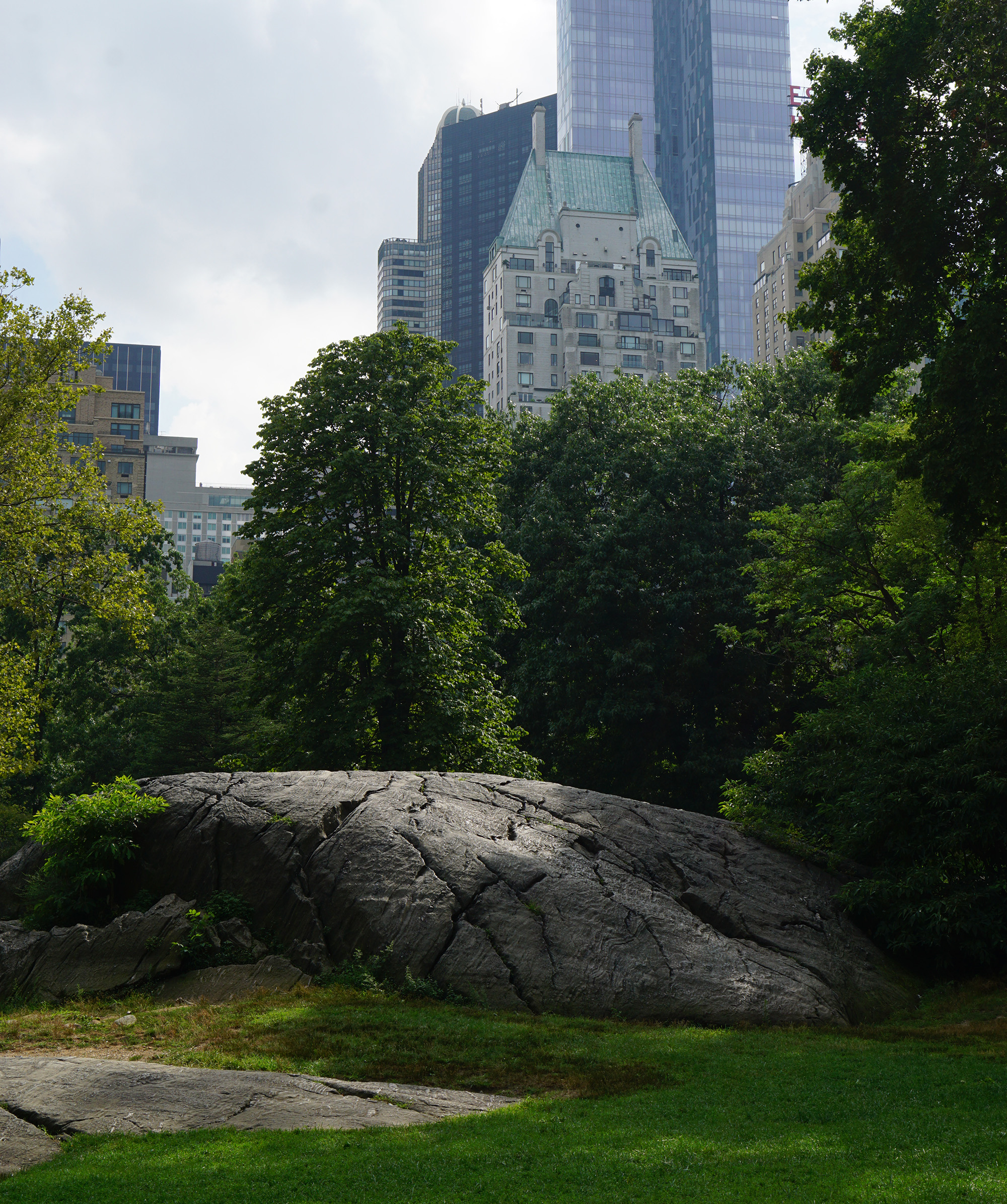 Central Park / NYC Green City Guide / Darker than Green