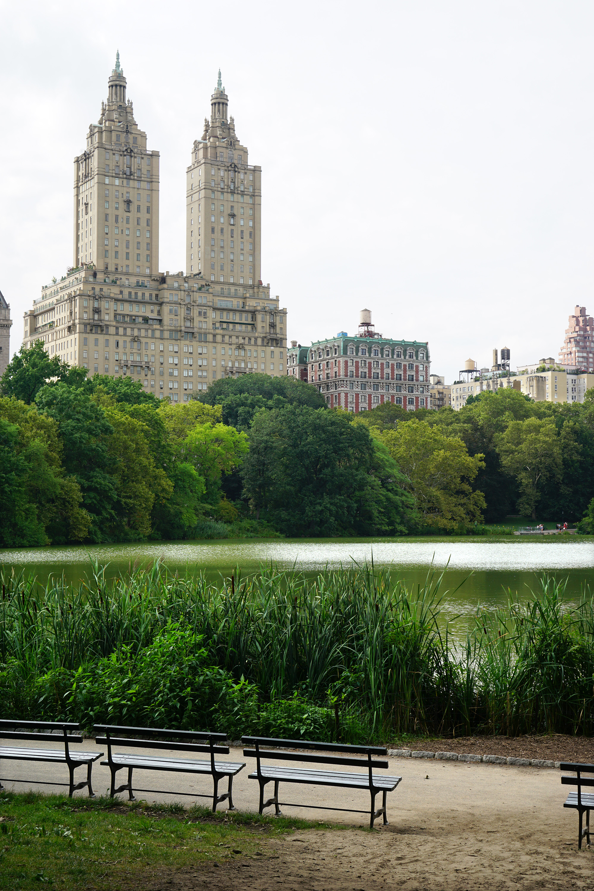 The Lake, Central Park, New York City / Darker than Green