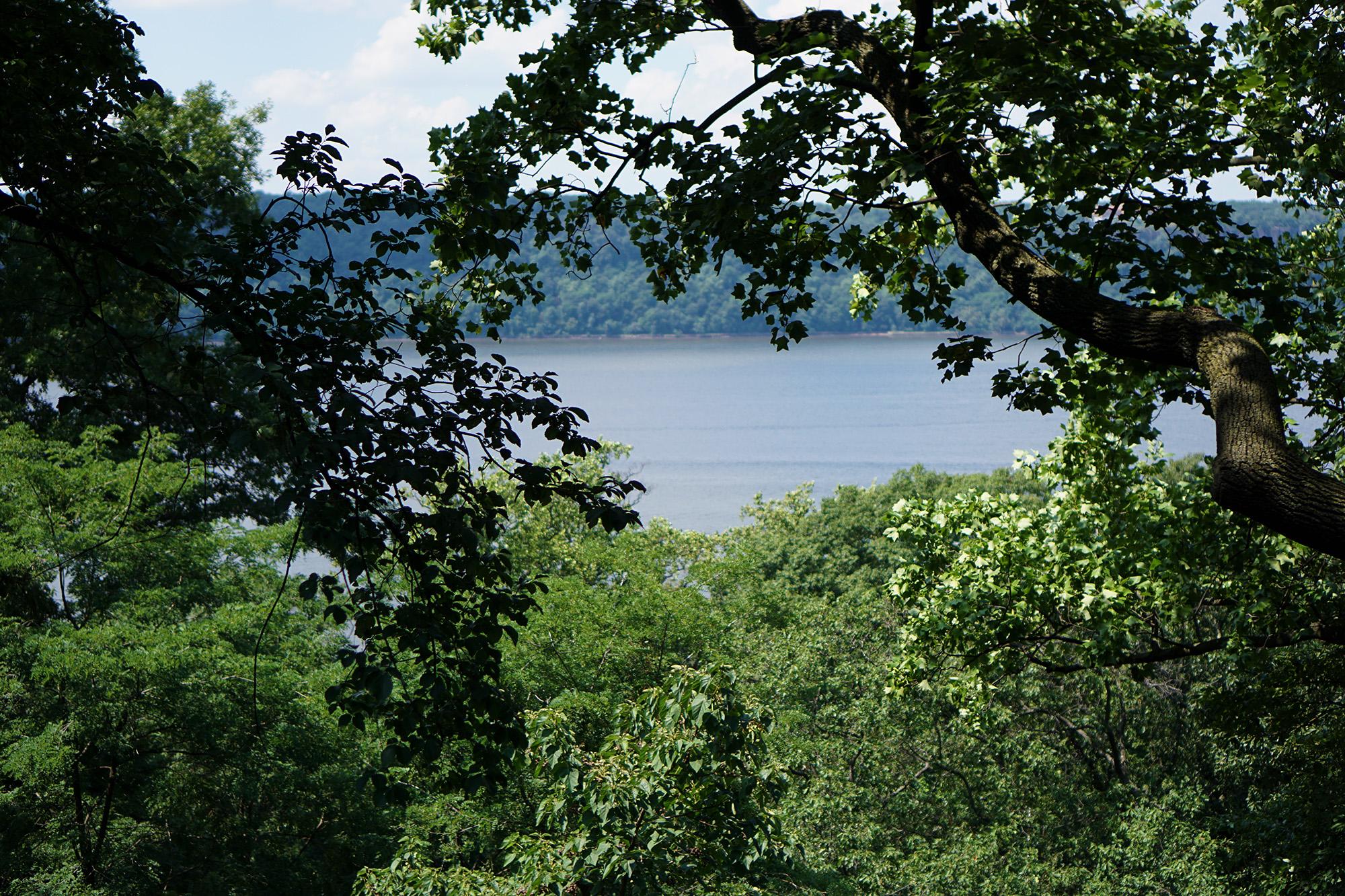 Hudson River off 190th St, NYC / Darker than Green