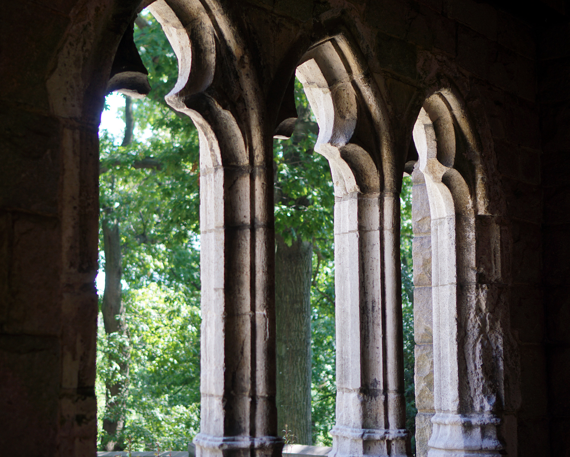 Trefoil arched windows at the Cloisters, New York City / Darker than Green