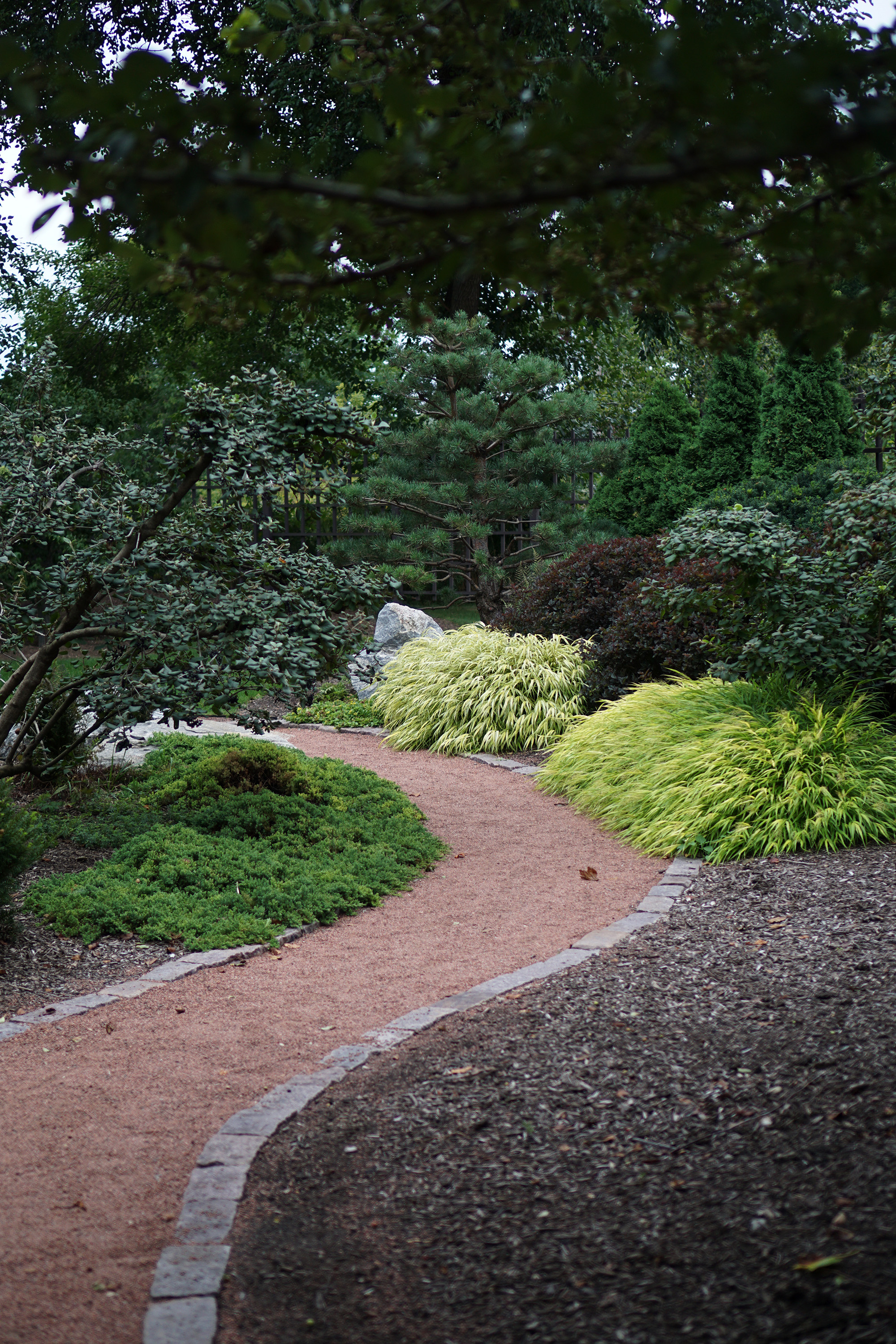 Meandering path in the Garden of the Phoenix, Jackson Park / Darker than Green