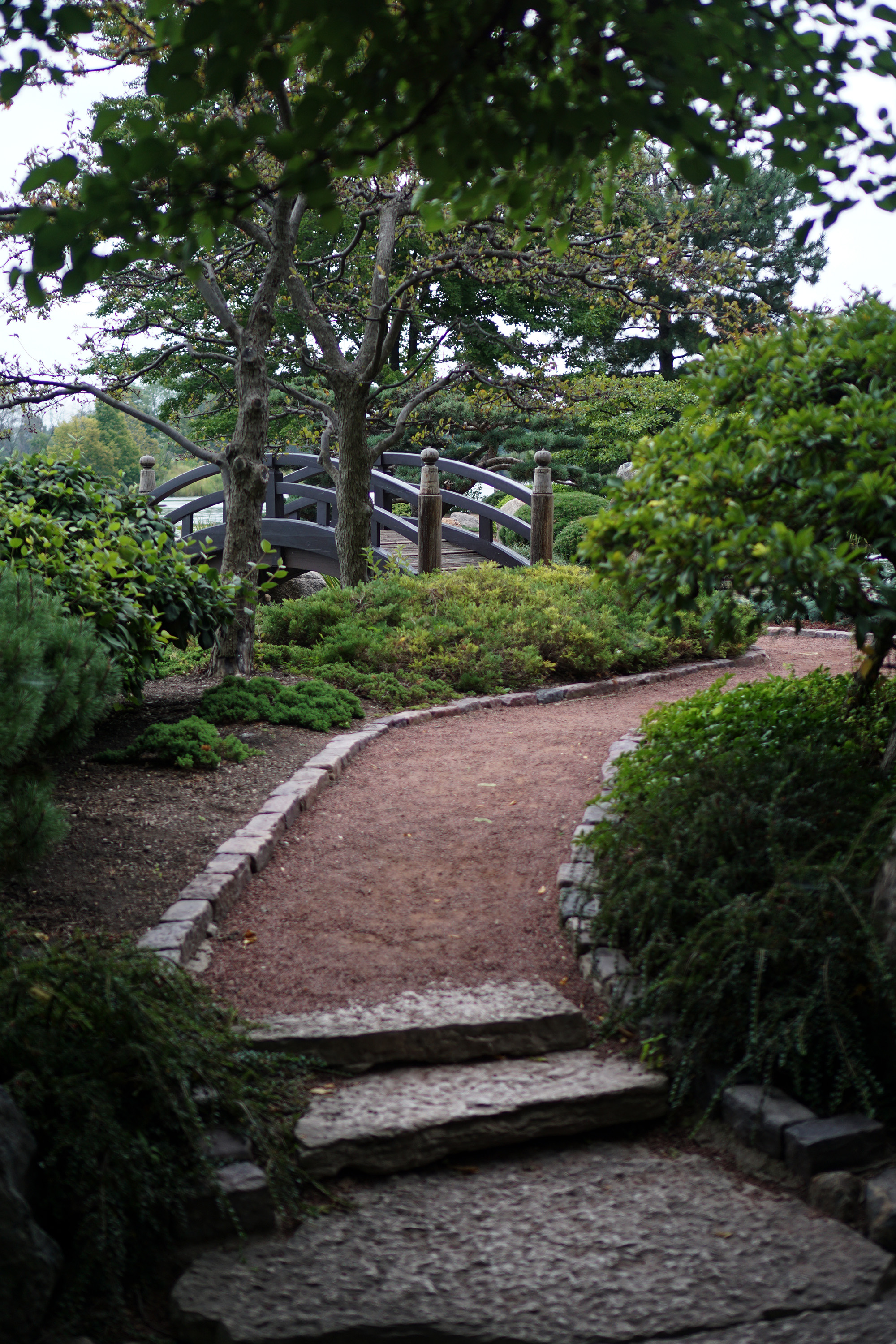 Meandering paths in the Garden of the Phoenix, Jackson Park / Darker than Green