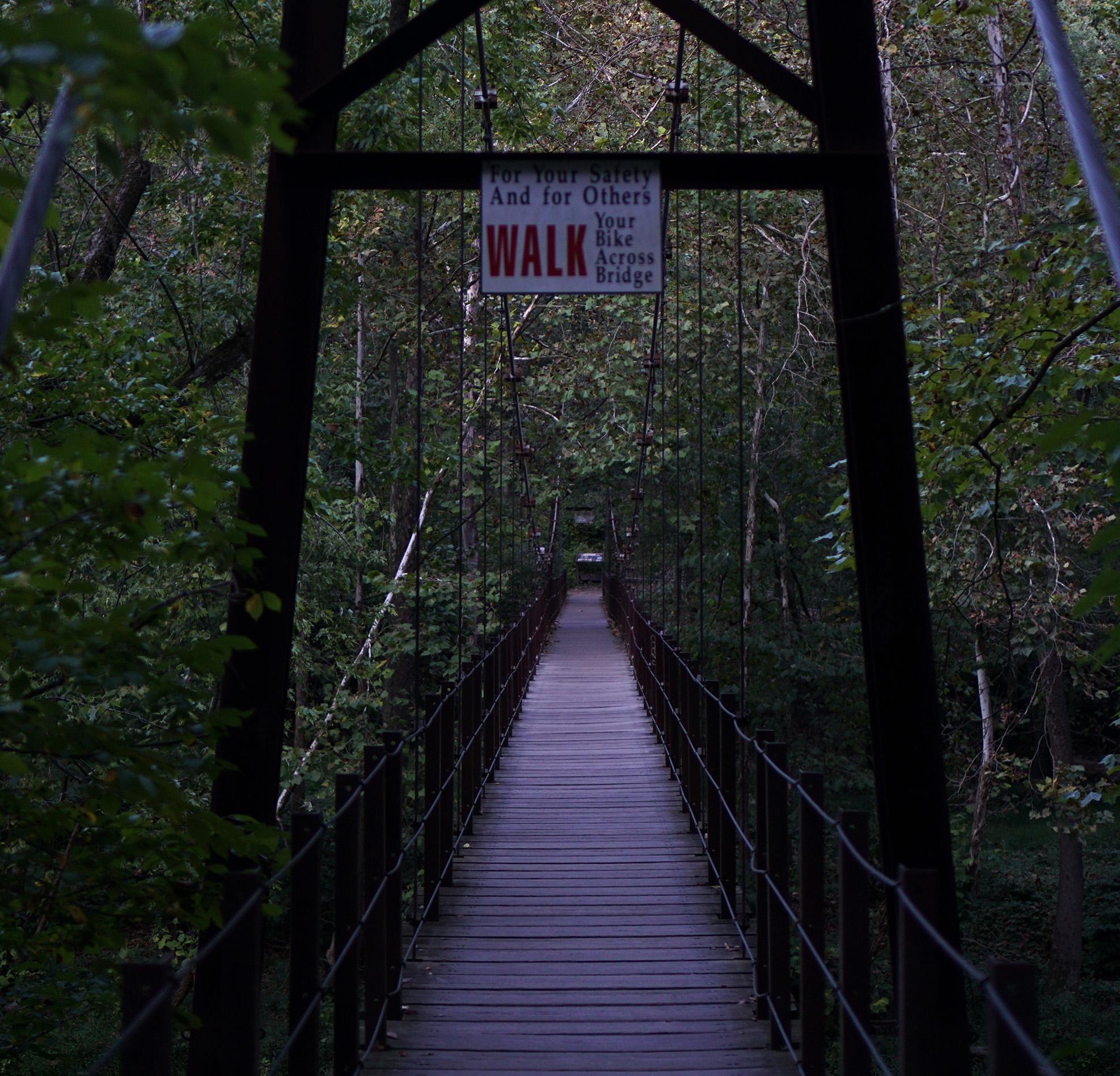 Swinging bridge, Patapsco Valley State Park, Maryland / Darker than Green