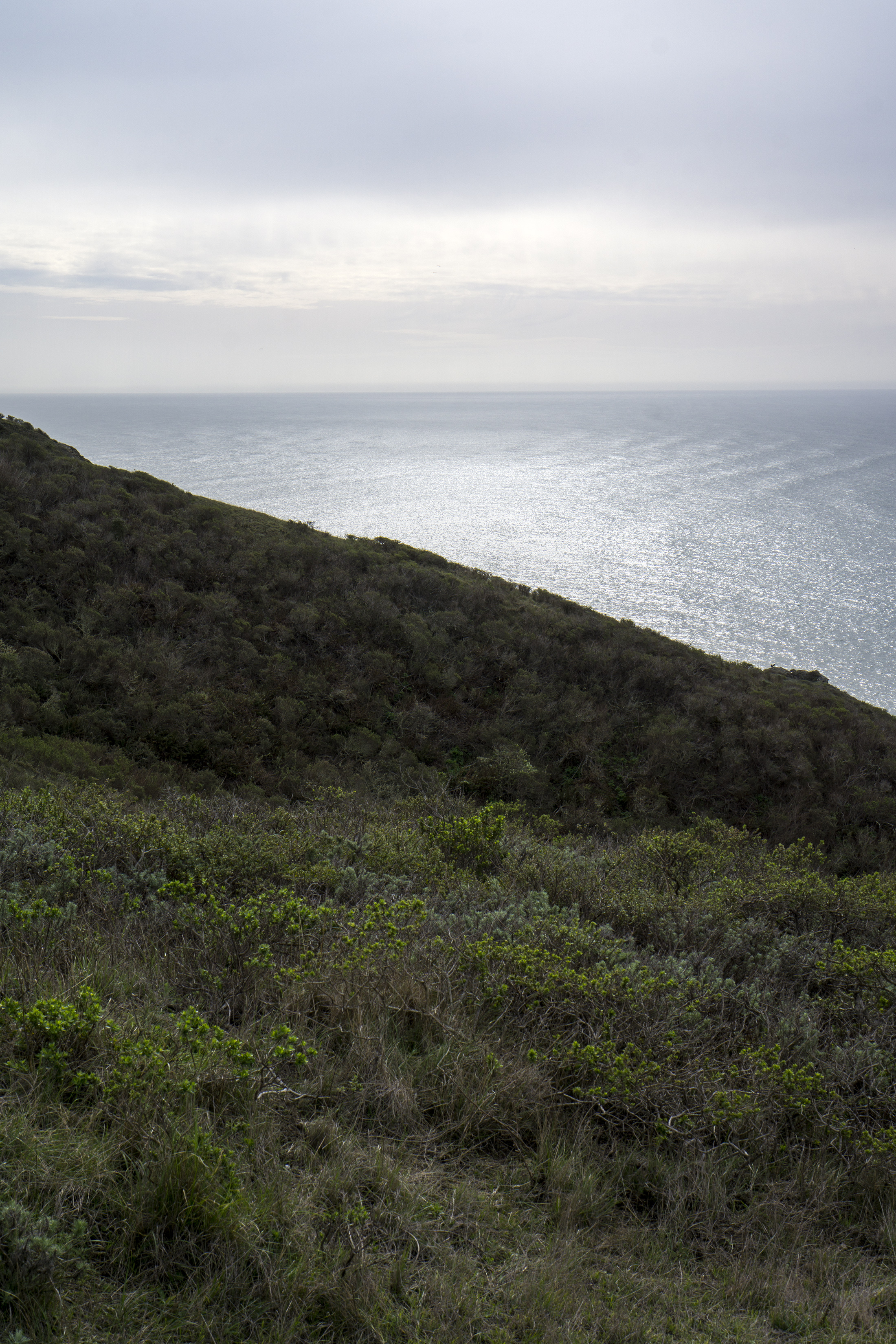 Pacific Ocean along Tennessee Valley Trail, Marin Headlands, Golden Gate National Recreation Area / Darker than Green
