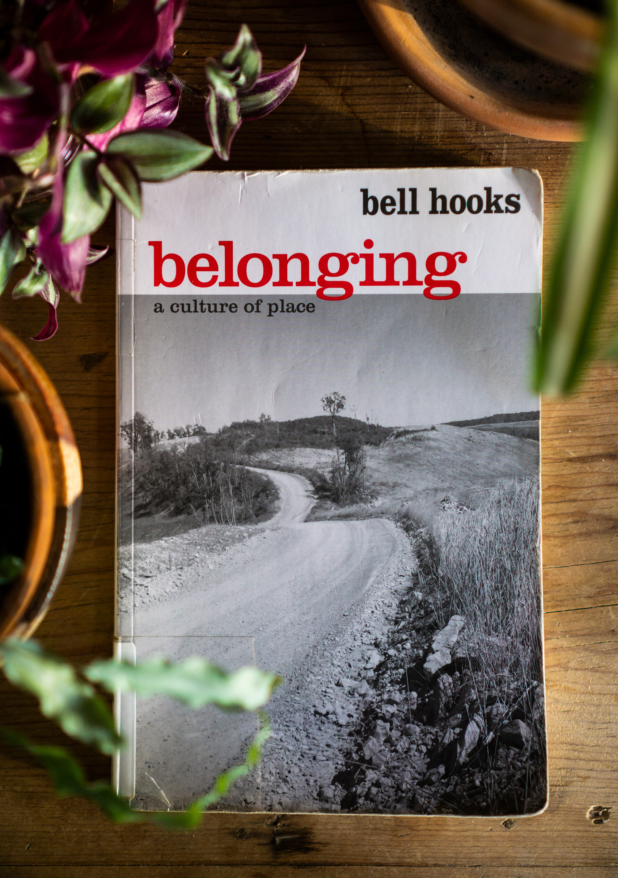 Belonging: A Culture of Place by bell hooks / Darker than Green
