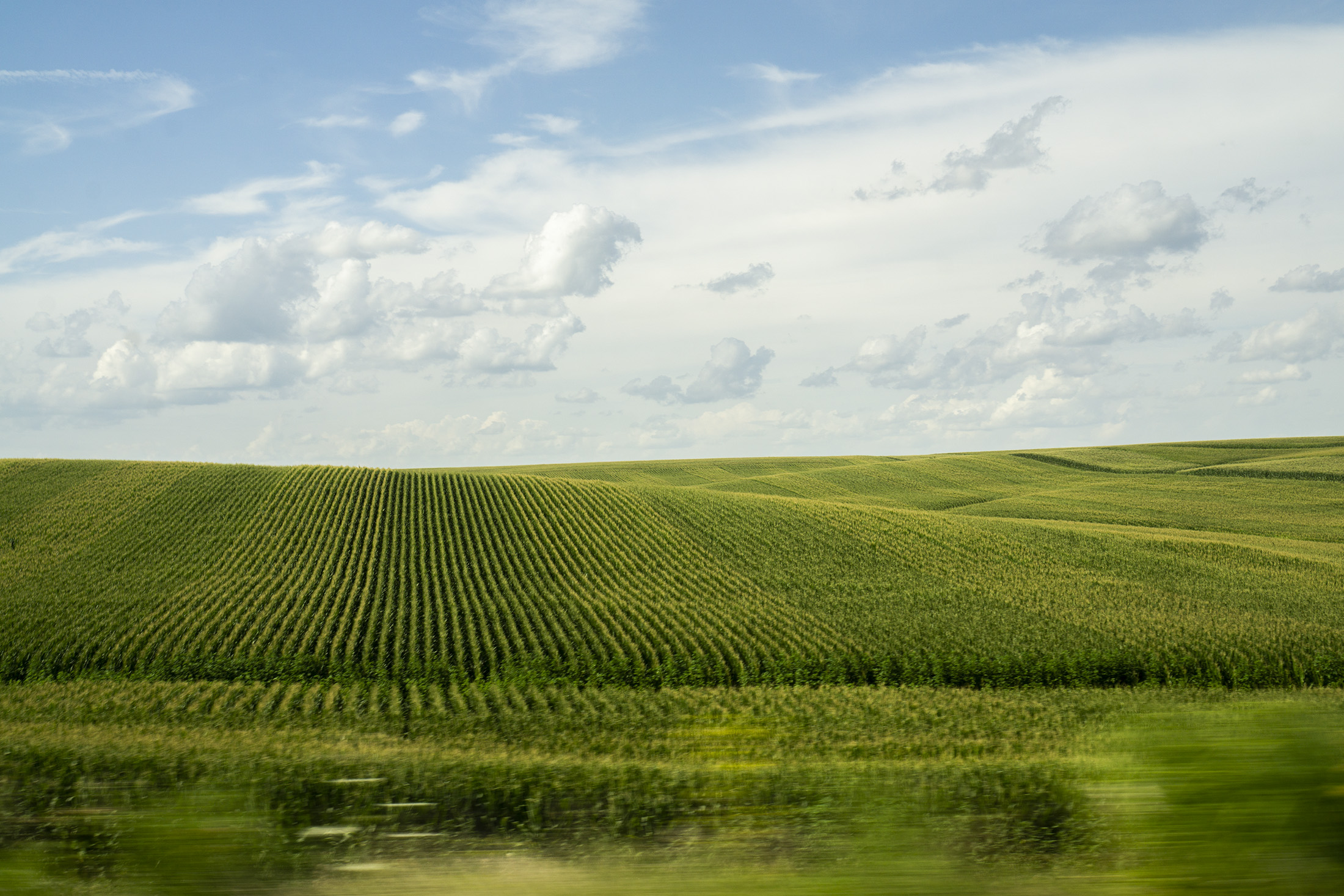 Corn farmland somewhere in Iowa / Darker than Green