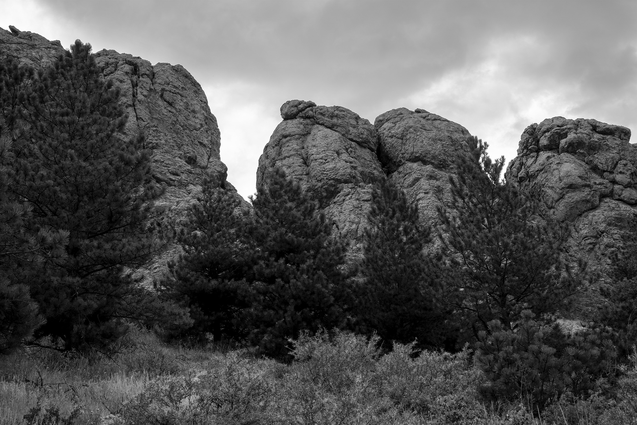 Horsetooth Rock, Colorado / Darker than Green