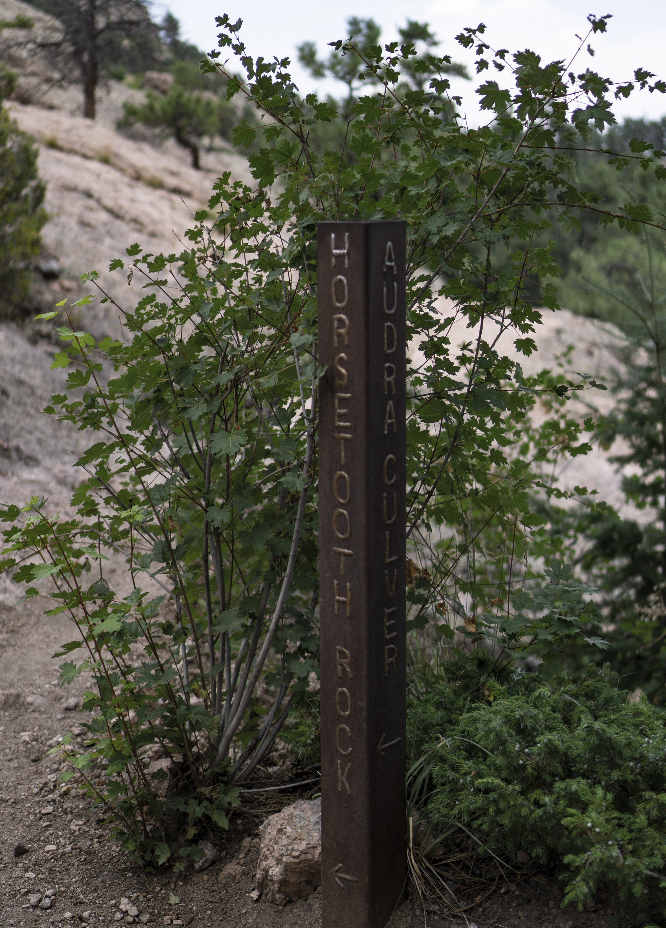 Horsetooth Rock trail marker, Colorado / Darker than Green