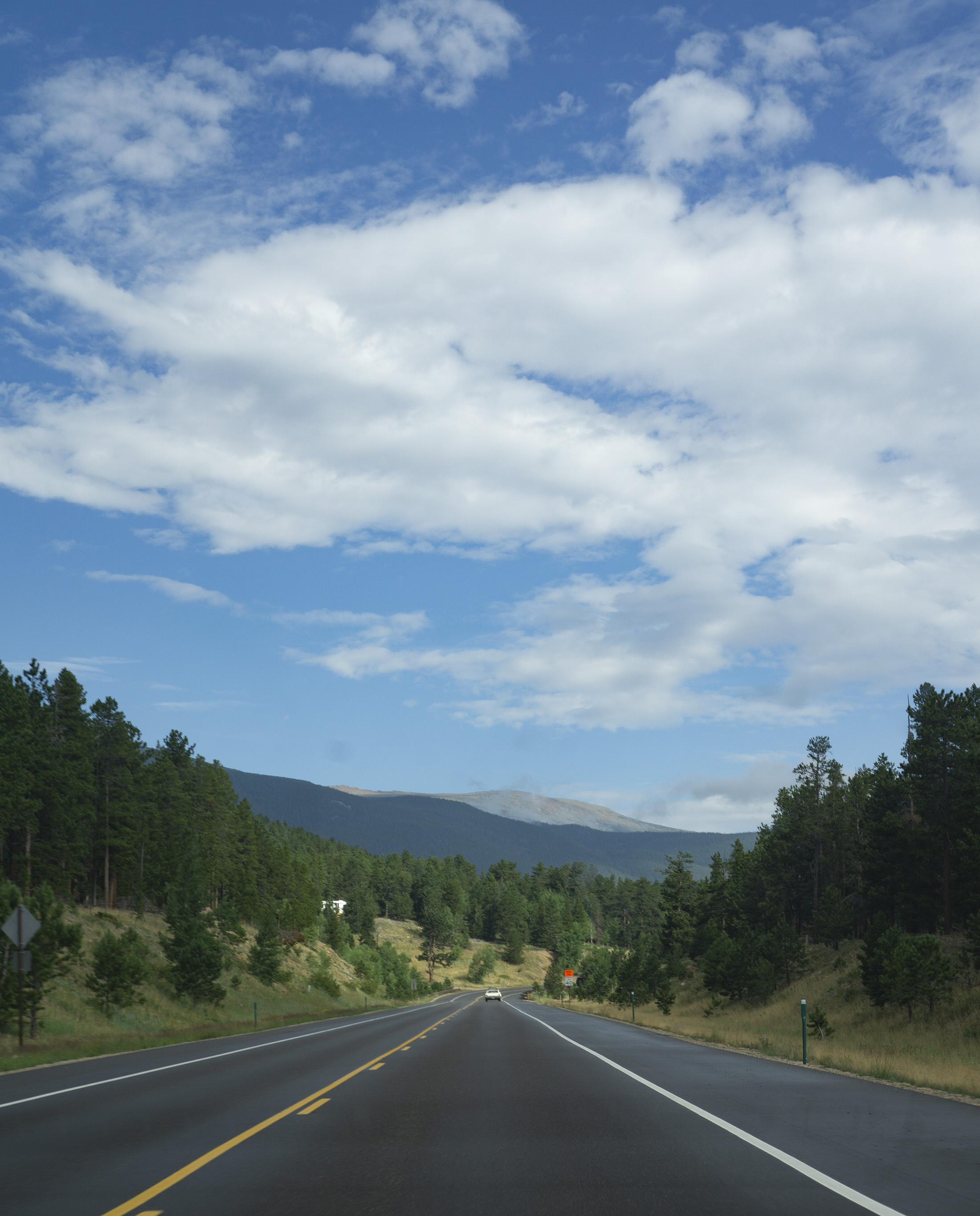 Driving through Roosevelt National Forest toward Meeker Park / Darker than Green