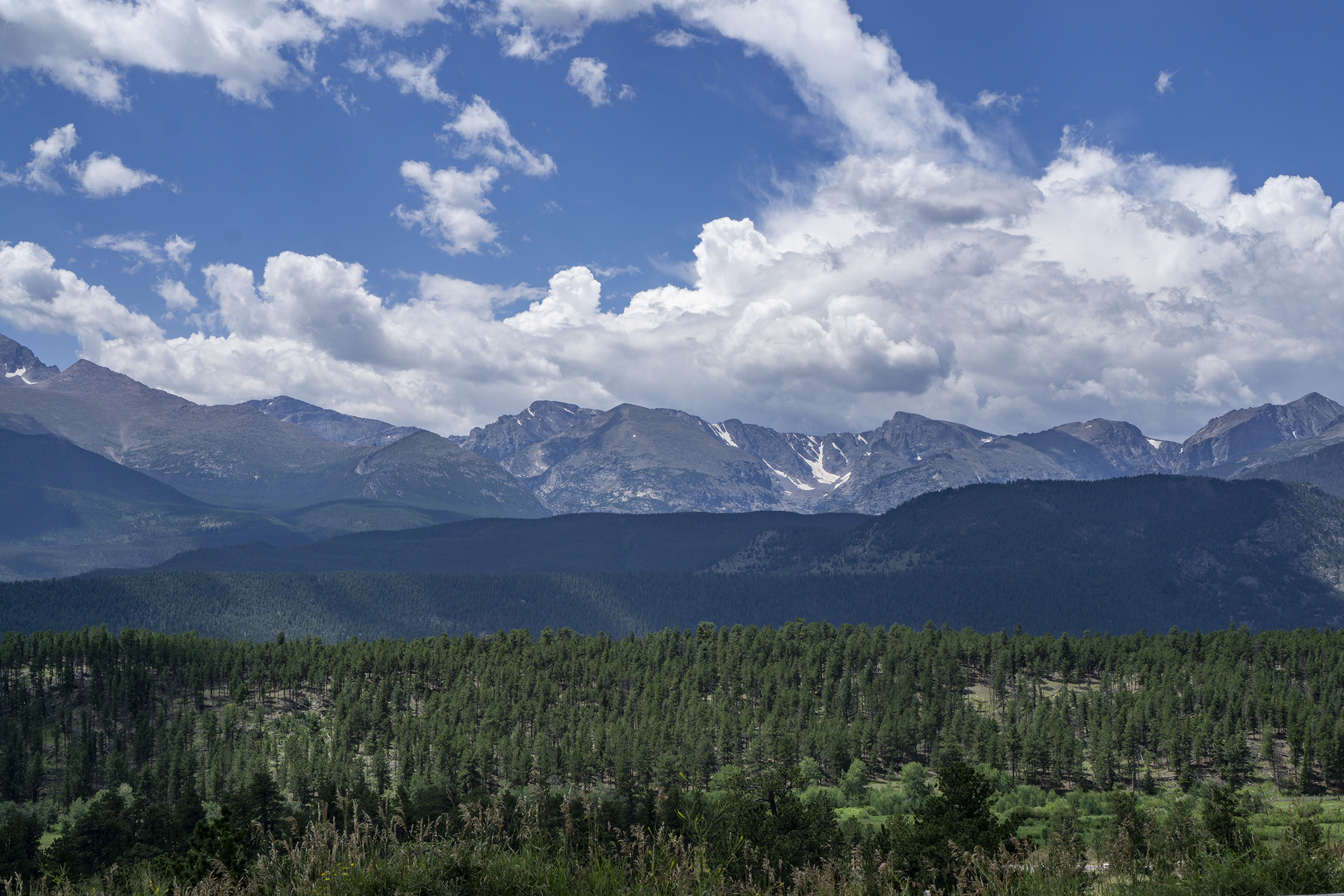 Mountain range and big open sky behind large group of evergreens, Rocky Mountain National Park / Darker than Green