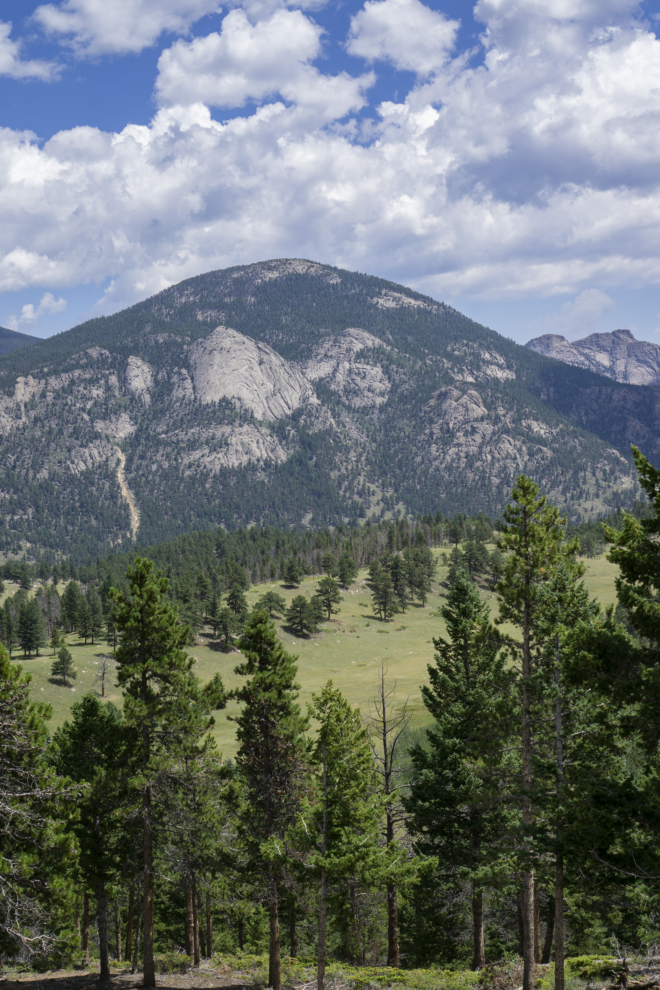 Domed mountain top in Rocky Mountain National Park / Darker than Green