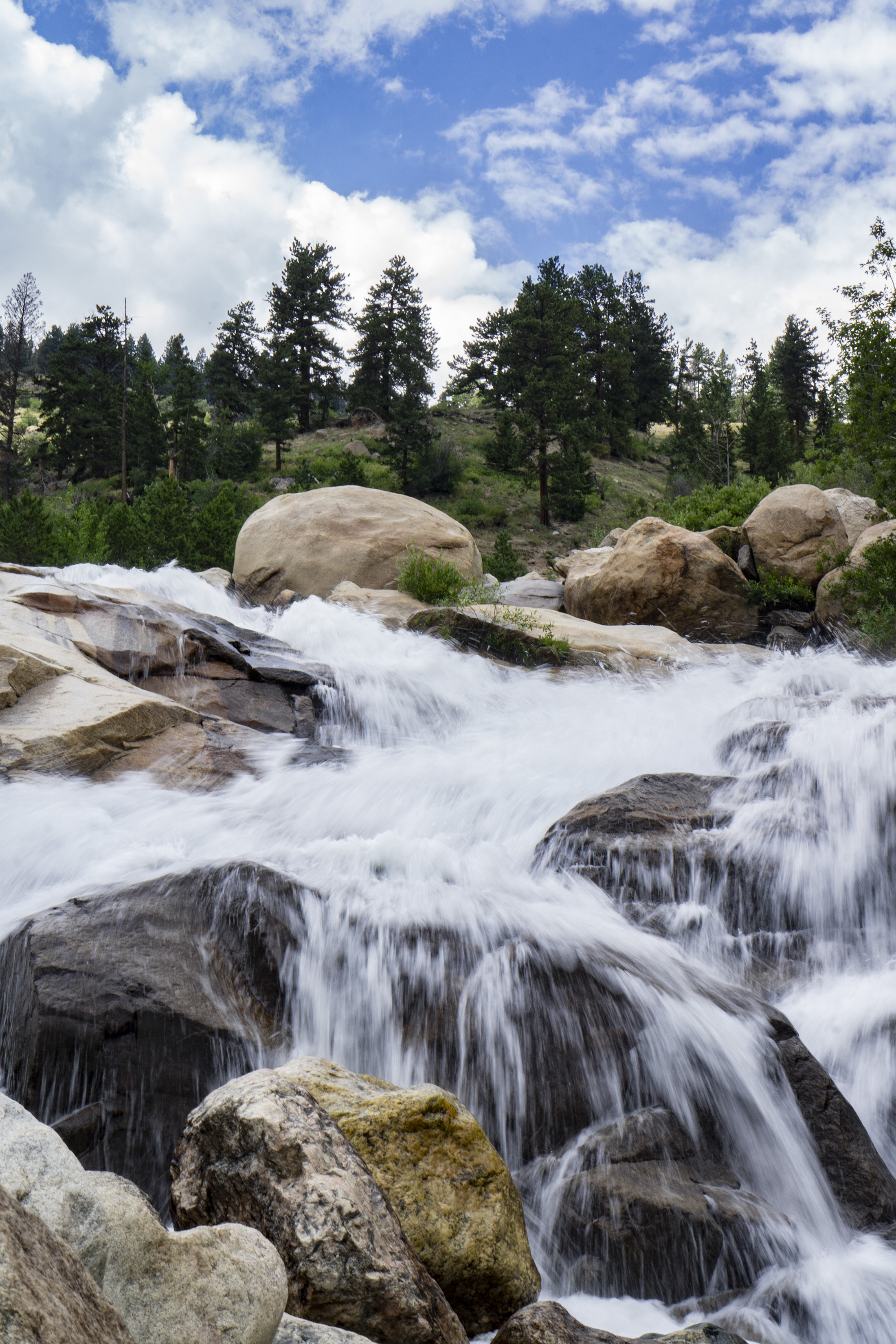 Waterfall at Alluvial Fan, Rocky Mountain National Park / Darker than Green
