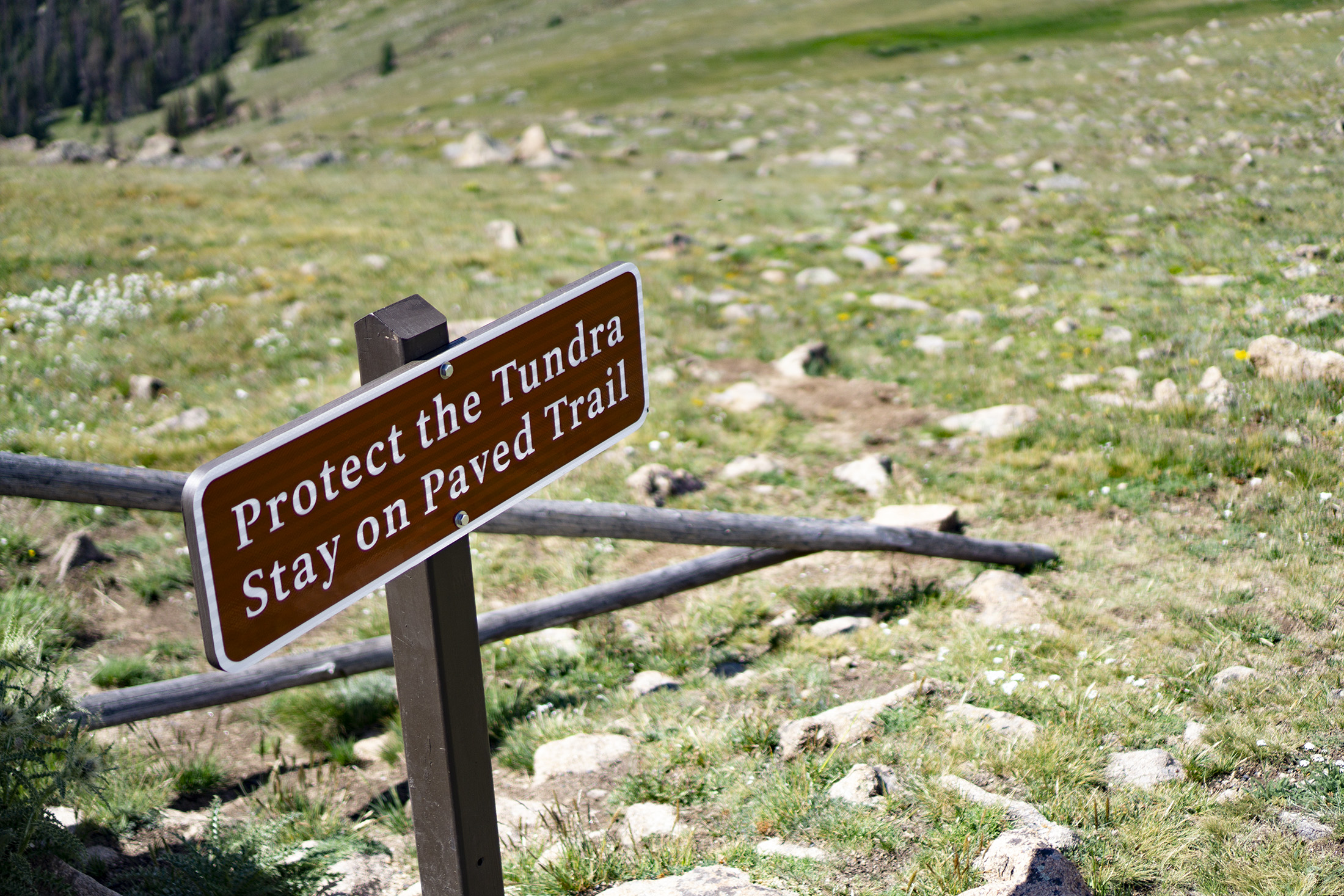 Sign warning to stay off the tundra, Rocky Mountain National Park / Darker than Green