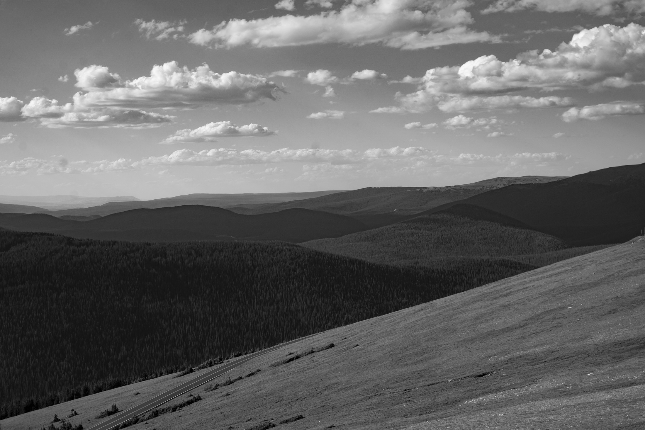 Tundra along Trail Ridge Road, Rocky Mountain National Park / Darker than Green